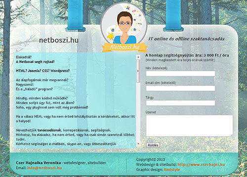 Netboszi.hu webdesign és sitebuild